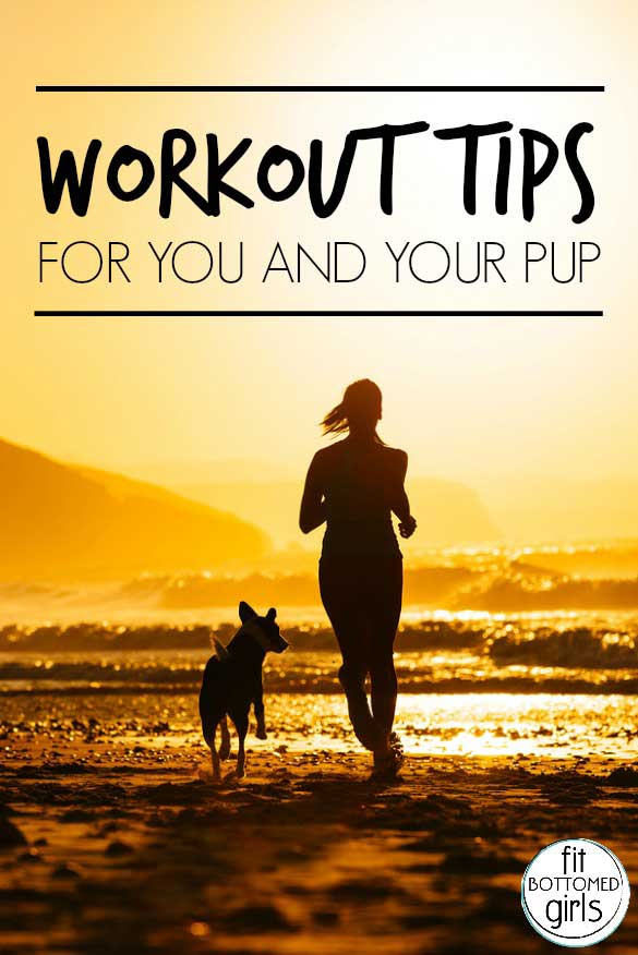workout-dog-585