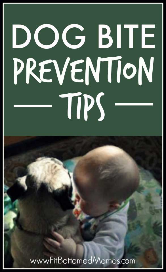 dogs-kids-prevention-585