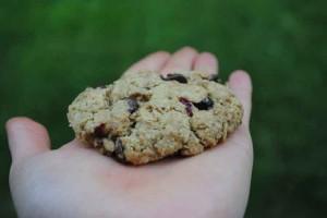 Kamut-cookie