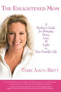 The Enlightened Mom book