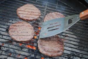 grilled bison burgers