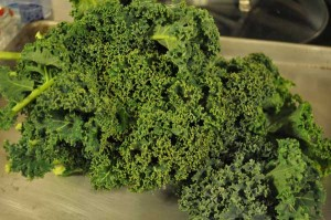 bunch of kale for kale chips