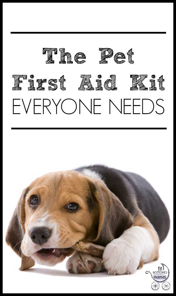 pet-first-aid-585