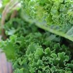 kale-leaves