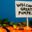 Looking for the great pumpkin, Charlie Brown? Try these great links first! Credit: JD Hancock