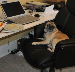 office marti