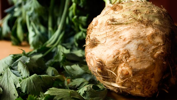 how to cook celery root mashed potatoes