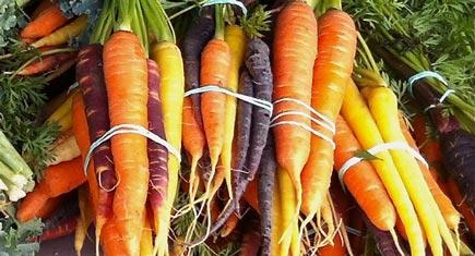 in-season-carrots