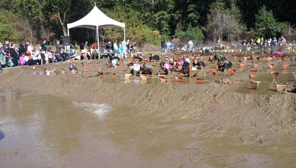 mud-pit