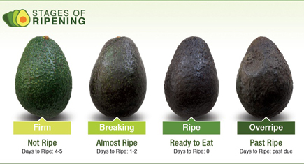 Too Ripe Avocado Recipes