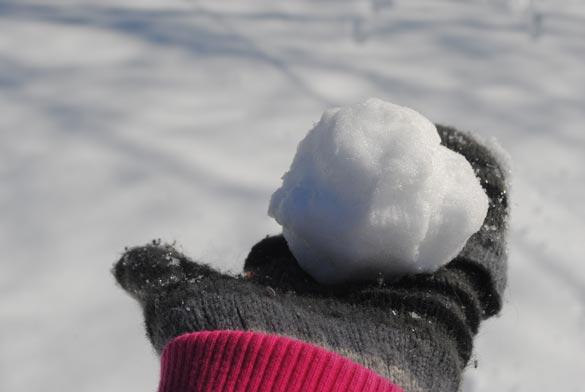 Workout I Did: Shoveling Snowpocalypse