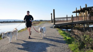 Running with the pup makes exercising fun