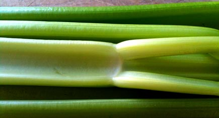 Celery, delicious in soup. Credit: TheDeliciousLife