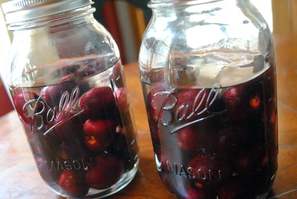 infused-vodka-cherries