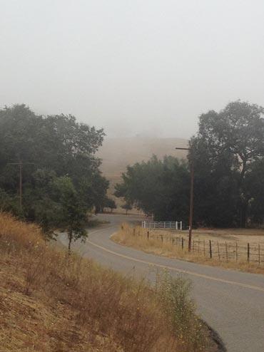 paso-robles-fog-road