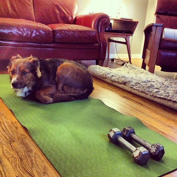 siena-yoga-mat