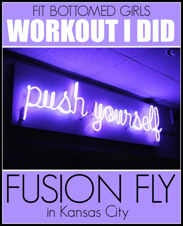 FusionFly