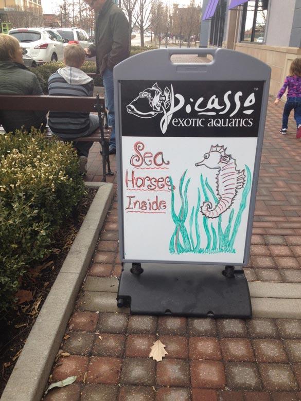 seahorses-sign