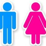 gender-roles-435