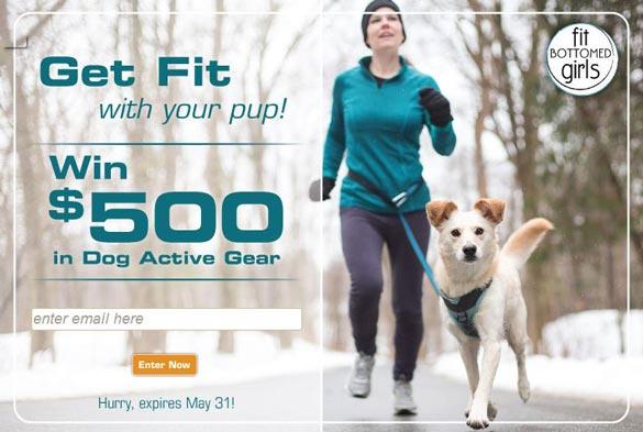 fbg-pets-giveaway