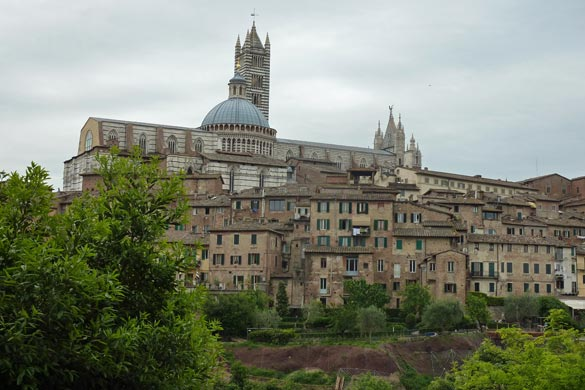 Siena. Built on top of a hill and not a flat street in sight.