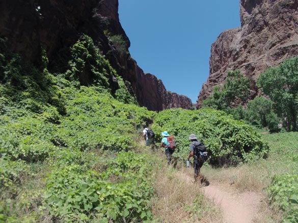 Hiking-to-Beaver-Falls