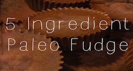 Paleo-Fudge-435