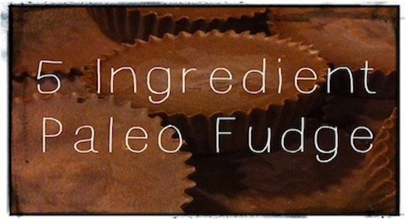 Paleo-Fudge