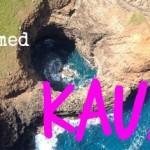 fbt-kauai-435kgs