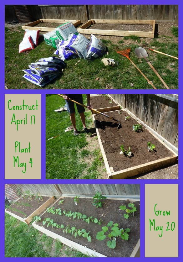 garden-collage-1-585