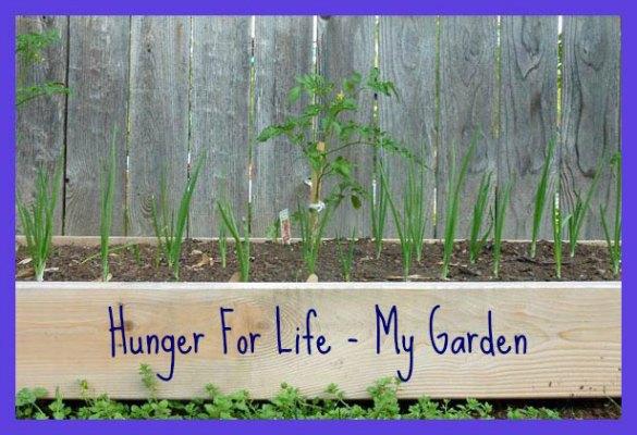 garden-header-1-585
