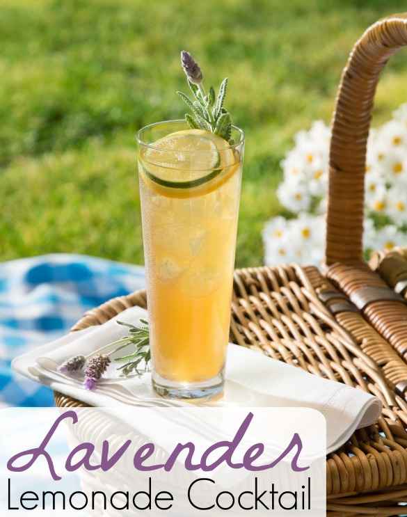 Lavender-lemonade-cocktail