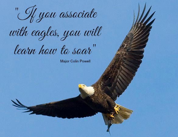 """If you associate with eagles you will learn how to sore.""   Major Colin Powell Credit: U.S. Fish and Wildlife Services – National Region, Flickr."