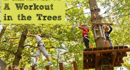 MOSCOW RUSSIA - SEPTEMBER 06 2014: Visitors of Adventure Panda-Park in Fili (Filyovsky) city park of Moscow Russia. Treetop adventure park provides ropes courses for kids and adults