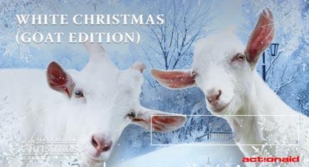 goat-christmas-435