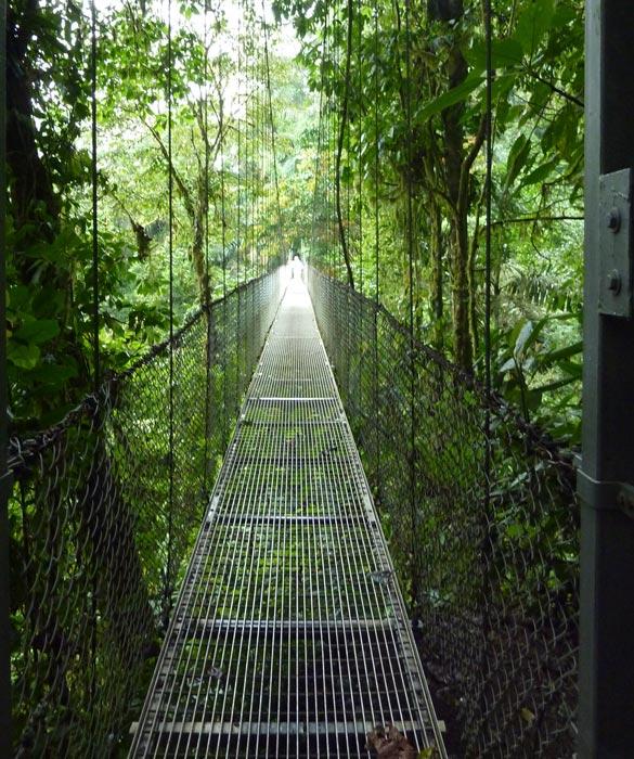mistico-long-bridge-585