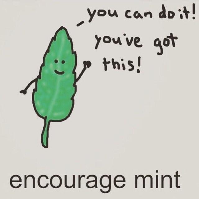 encourage mint meme